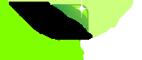 Star Tint Logo